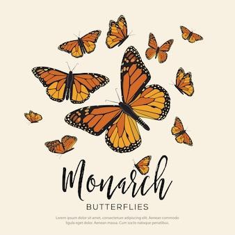 Composizione di farfalle monarca