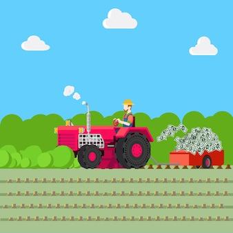 Illustrazione di agricoltura della raccolta dei soldi