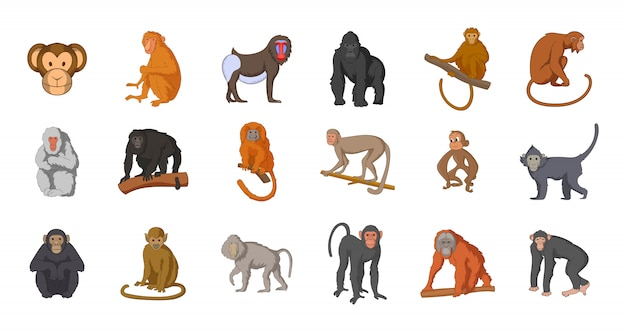 Set di elementi di scimmia. insieme del fumetto degli elementi di vettore di scimmia