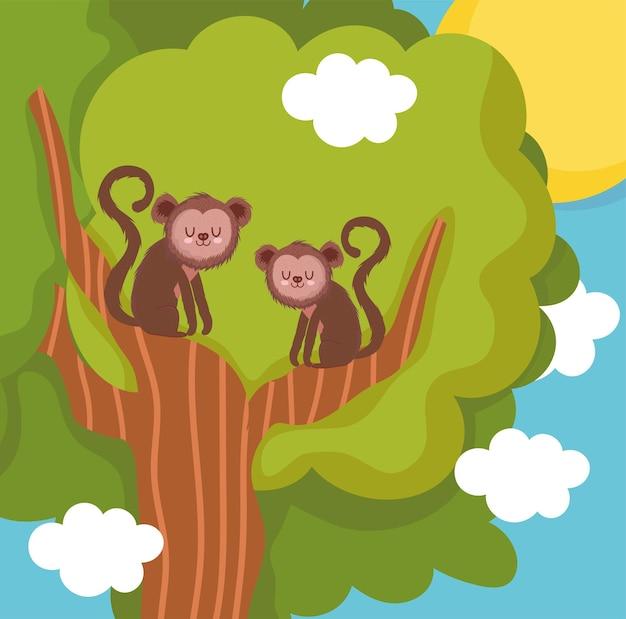 Scimmie sul ramo