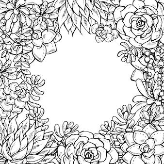 Piante succulente disegnate a mano monocromatiche sulla carta bianca del fondo per il saluto o l'invito, illustrazione.