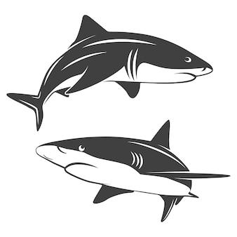 Illustrazione monocromatica di due squali stilizzati isolati su bianco.