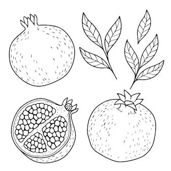 Illustrazione monocromatica del melograno