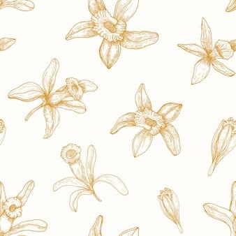 Modello monocromatico senza cuciture con fiori di vaniglia in fiore disegnati con linee di contorno