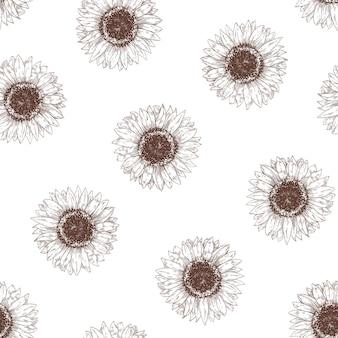 Modello senza cuciture monocromatico con teste di girasole. contesto botanico con fiori che sbocciano disegnati a mano con linee di contorno su sfondo bianco. elegante illustrazione vettoriale per carta da imballaggio, carta da parati.