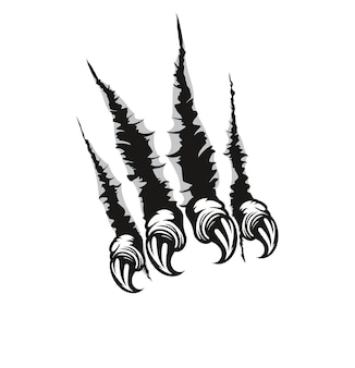 Segni e graffi di artigli mostruosi
