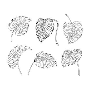 Disegno del profilo della foglia di monstera per l'ornamento della natura