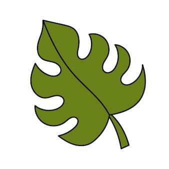 Foglia di monstera, piante tropicali. illustrazione semplice. icona dell'estate