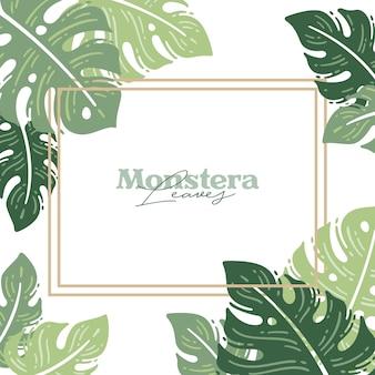 Monstera lascia primavera sfondo natura stile alla moda