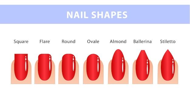 Le forme più popolari di unghie. diversi tipi di unghie. guida alla manicure.