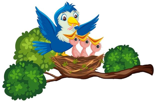 Madre di uccelli che alimentano i pulcini