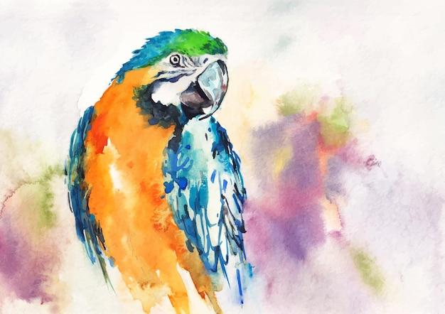 Pittura ad acquerello di uccelli a più colori e design artistico