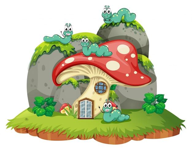 Casa di funghi con quattro bruchi