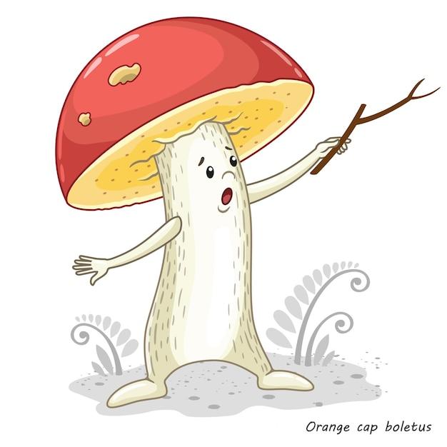Funghi isolati su bianco