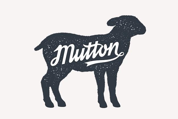 Montone, pecora, agnello, lettering.