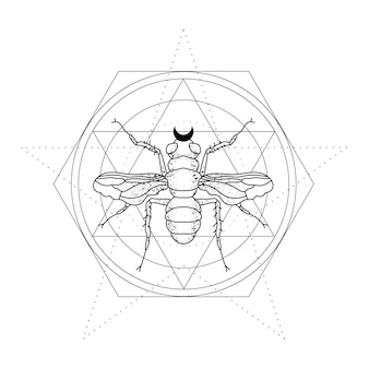 Illustrazione mistica con un insetto. line art per il disegno del tatuaggio. contorno vettoriale
