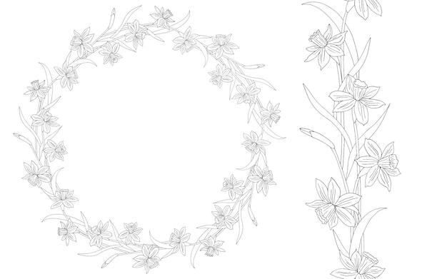 Narciso o narcisi. illustrazione disegnata a mano. cornice floreale rotonda. linea artistica.