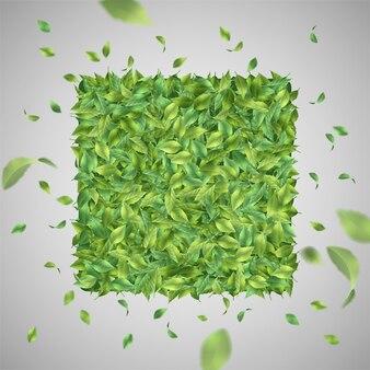 Sfondo verde naturale con foglie volanti