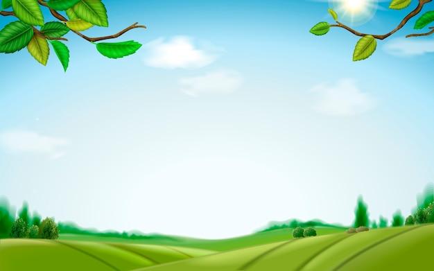 Illustrazione di sfondo campo verde naturale