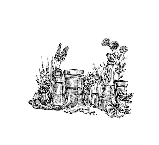 Botanica organica naturale e vetreria scientifica, medicina delle erbe alternative