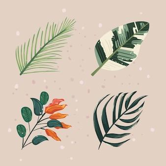 Collezione di icone di foglie di piante naturali Vettore Premium