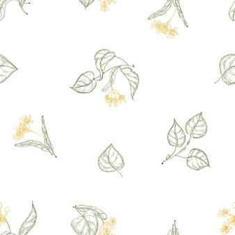 Modello senza cuciture naturale con fiori di tiglio in fiore e foglie disegnate con linee di contorno su priorità bassa bianca