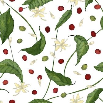 Modello naturale senza cuciture con foglie di coffea o di albero del caffè, fiori che sbocciano, petali e frutti