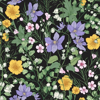 Modello senza cuciture naturale con splendidi fiori che sbocciano teneri e piante erbacee in fiore sul nero.
