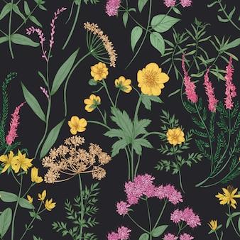 Modello senza cuciture naturale con splendidi fiori di campo o fiori che sbocciano ed erbe fiorite di prato selvatico sul nero