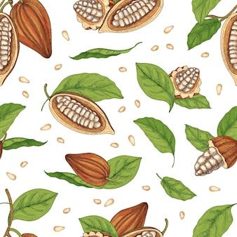 Modello senza cuciture naturale con baccelli o frutti dell'albero del cacao, fagioli o semi e foglie disegnati a mano su fondo bianco.