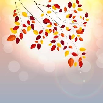 Illustrazione di vettore del fondo delle foglie di autunno pieno di sole naturale