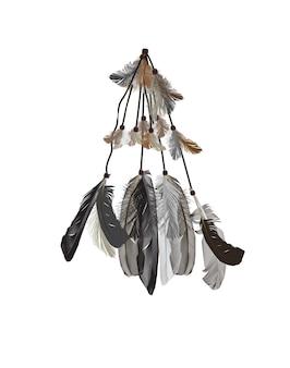 Uccello di piume naturalistico isolato su sfondo bianco.