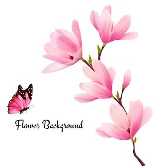 Sfondo della natura con ramo di fiori rosa e farfalle.