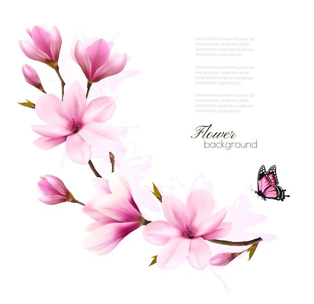 Sfondo della natura con ramo di fiori di magnolia rosa e farfalla. vettore