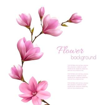 Fondo della natura con il ramo del fiore di magnolia rosa. vettore