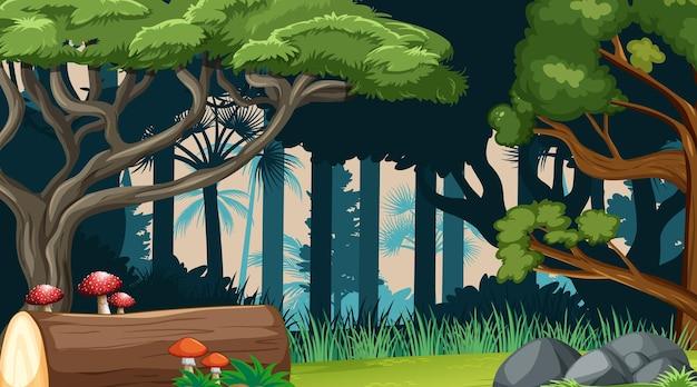 Fondo del paesaggio della foresta della natura