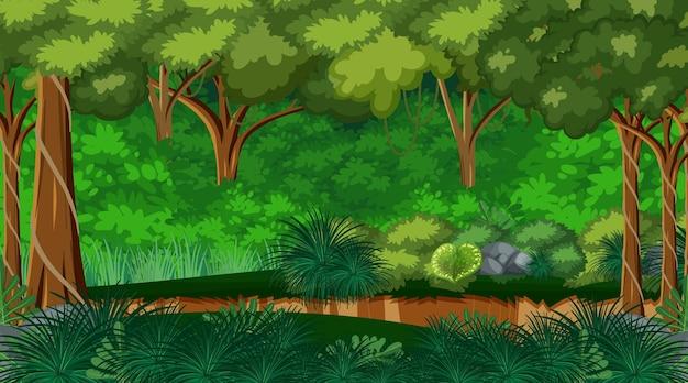 Sfondo del paesaggio della foresta naturale