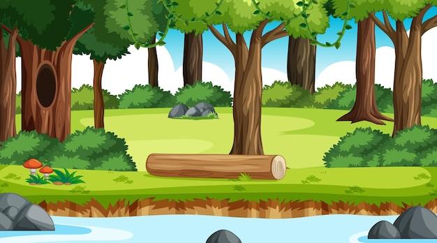 Priorità bassa della foresta all'aperto della natura