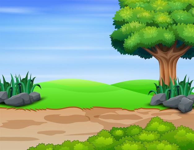 Scena della natura con il grande albero sul campo