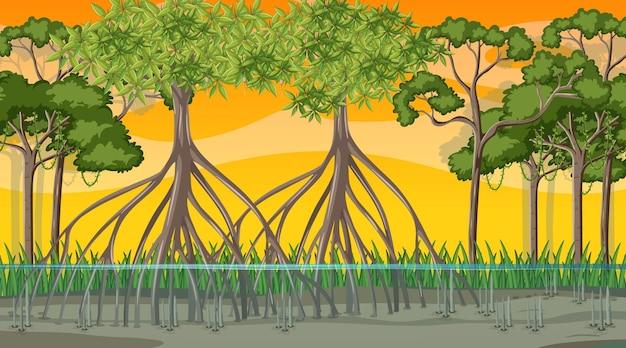 Scena della natura con la foresta di mangrovie all'ora del tramonto in stile cartone animato
