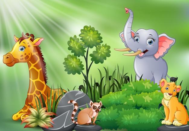 Scena della natura con cartone animato di animali selvatici