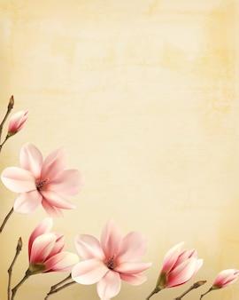 Sfondo di natura primaverile con bellissimi rami di magnolia su carta vecchia. vettore.