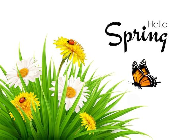 Sfondo di primavera natura con erba, fiori e farfalle.