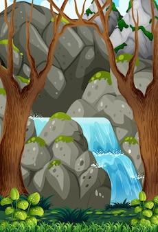 Acqua naturale nella foresta