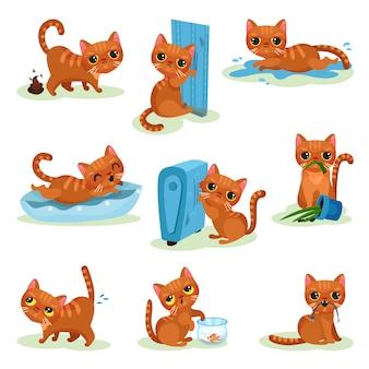 Gattino impertinente in diverse situazioni, malizioso simpatico gattino illustrazioni su uno sfondo bianco