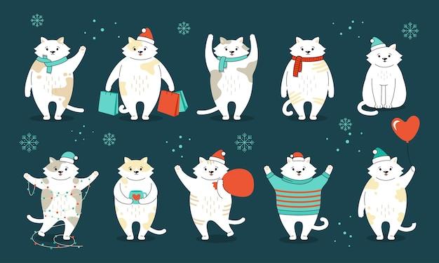 Gattino di nuovo anno in cappelli di babbo natale