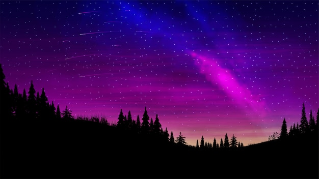 Paesaggio notturno con un bel cielo multicolore e un ammasso di stelle