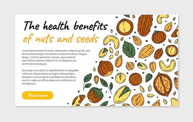 Bella illustrazione di noci e semi