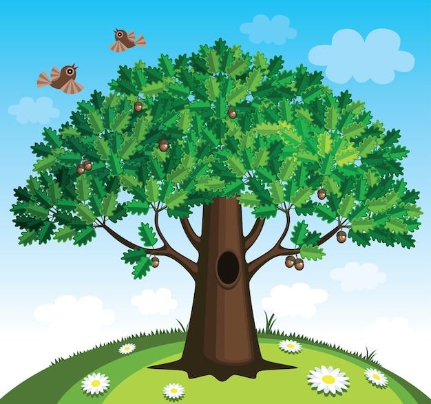 Illustrazione dell'albero di quercia