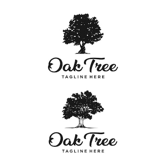 Oak tree logo design silhouette vettore